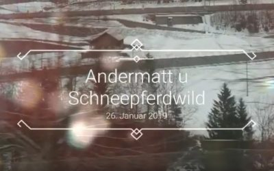 Andermatt und Schneepferdwild